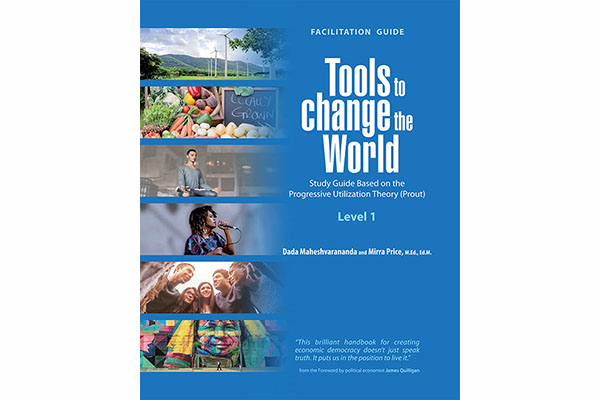 New! Facilitation Guide for Tools to Change the World